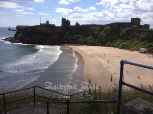 Looking north towards Tynemouth Castle