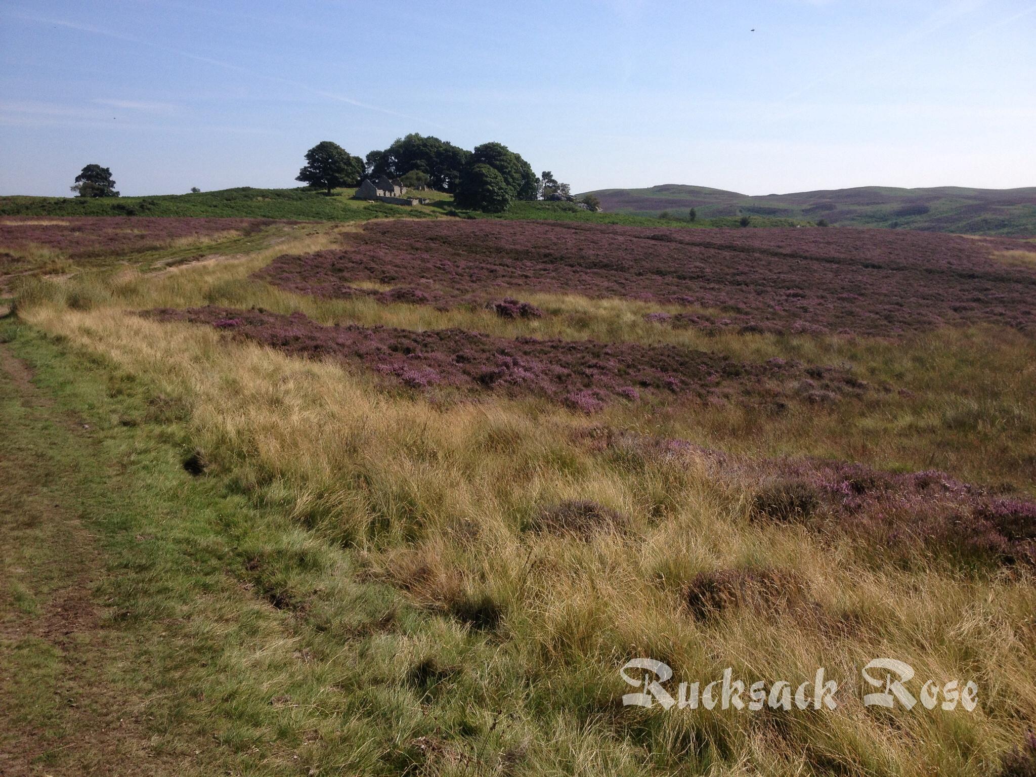 Track towards Blawearie