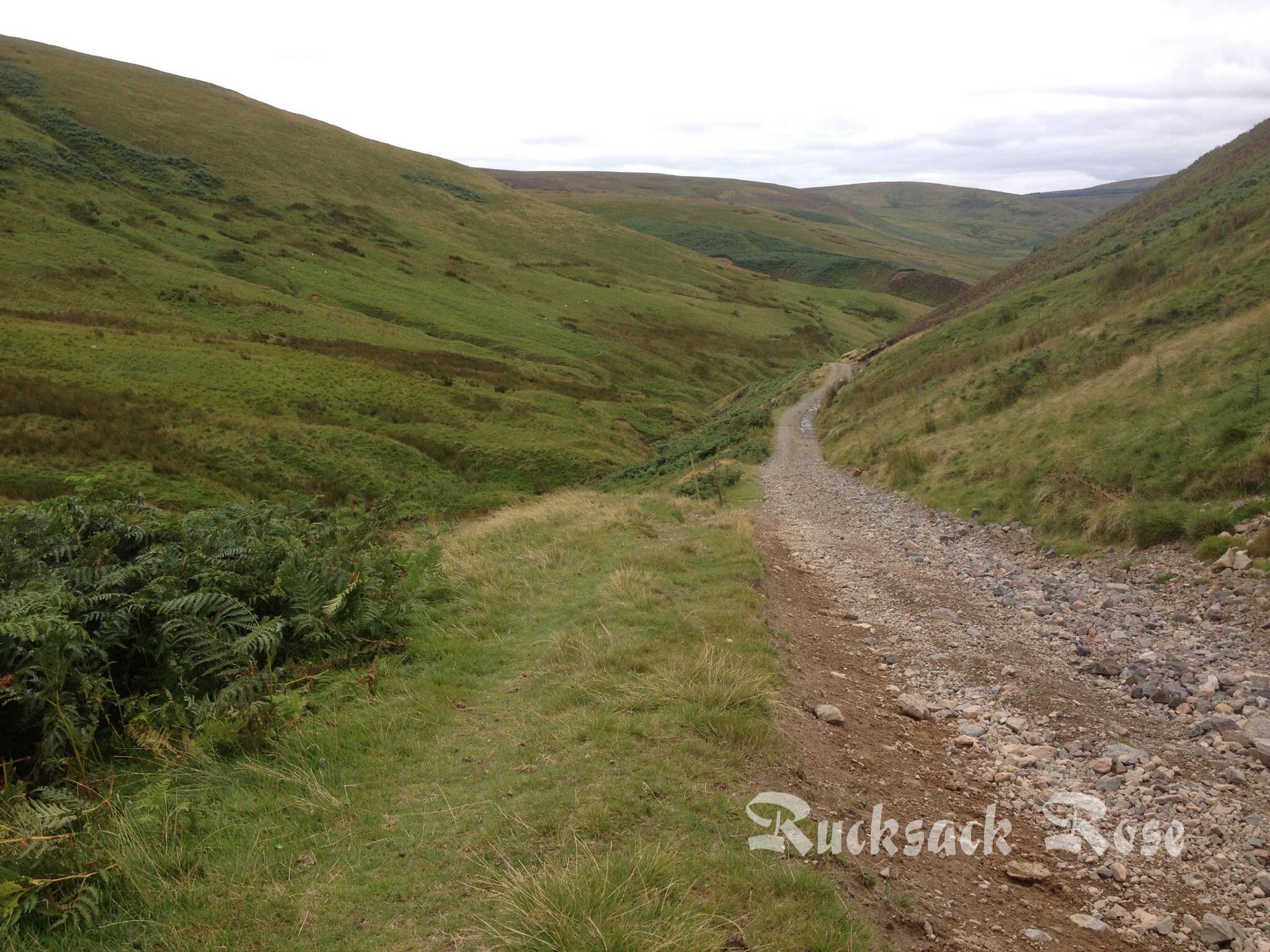 Salters Road near Low Blakehope