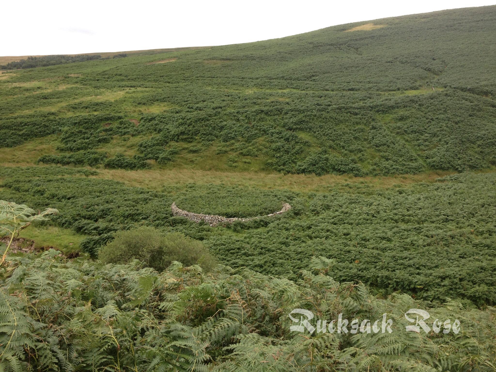Quad bike track near Alnhammoor