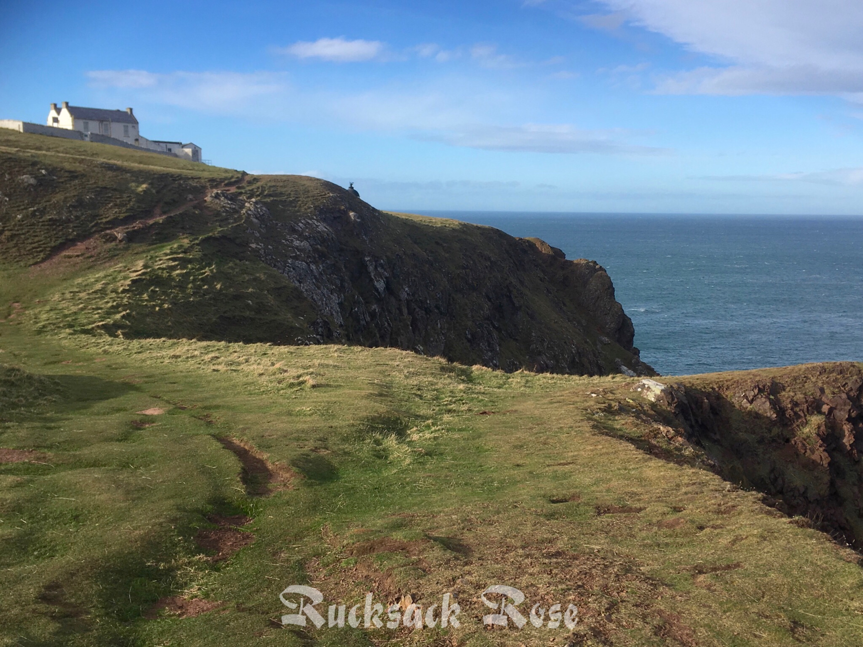 St Abb's Head nature reserve