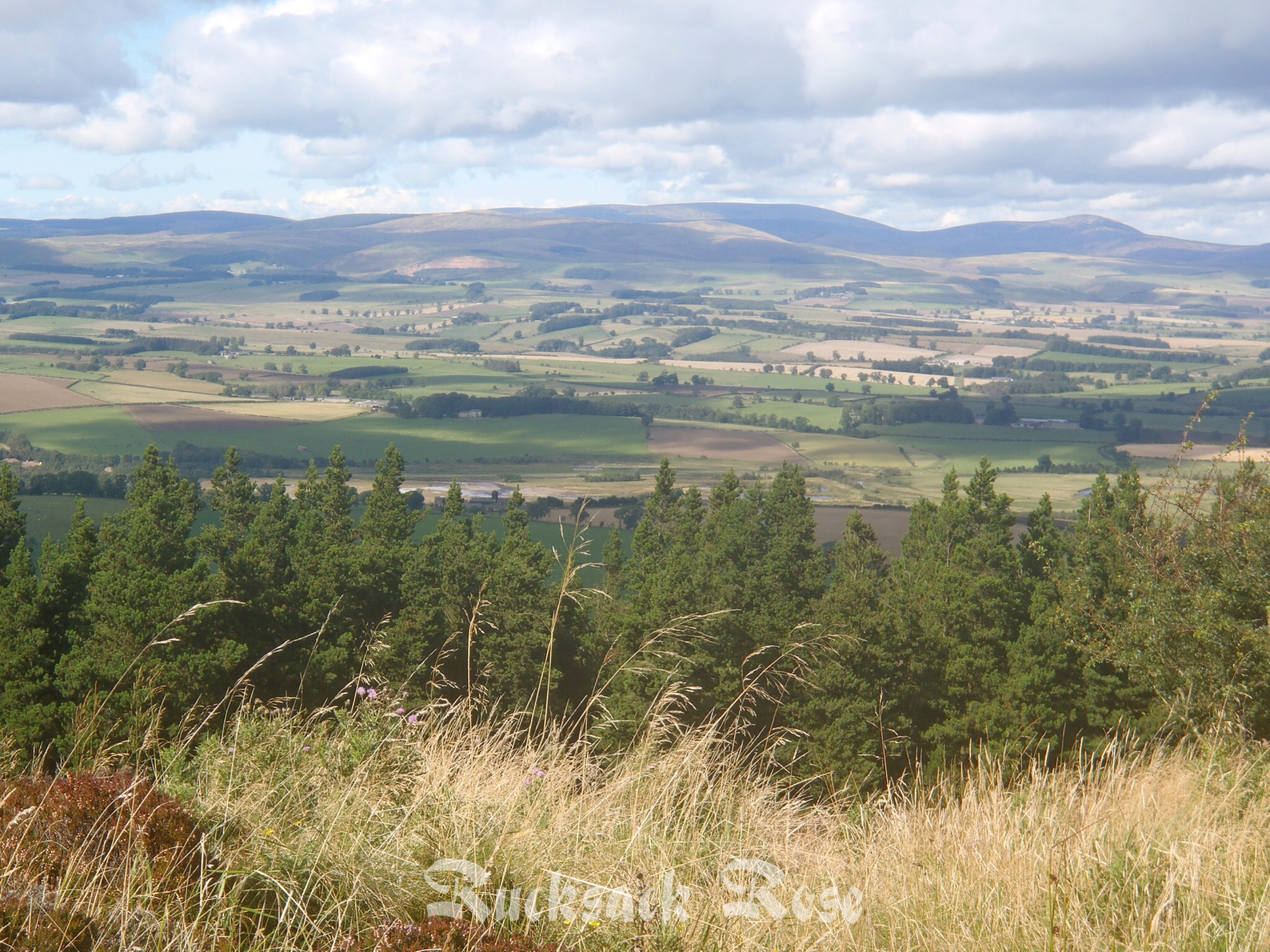 View from Simonside