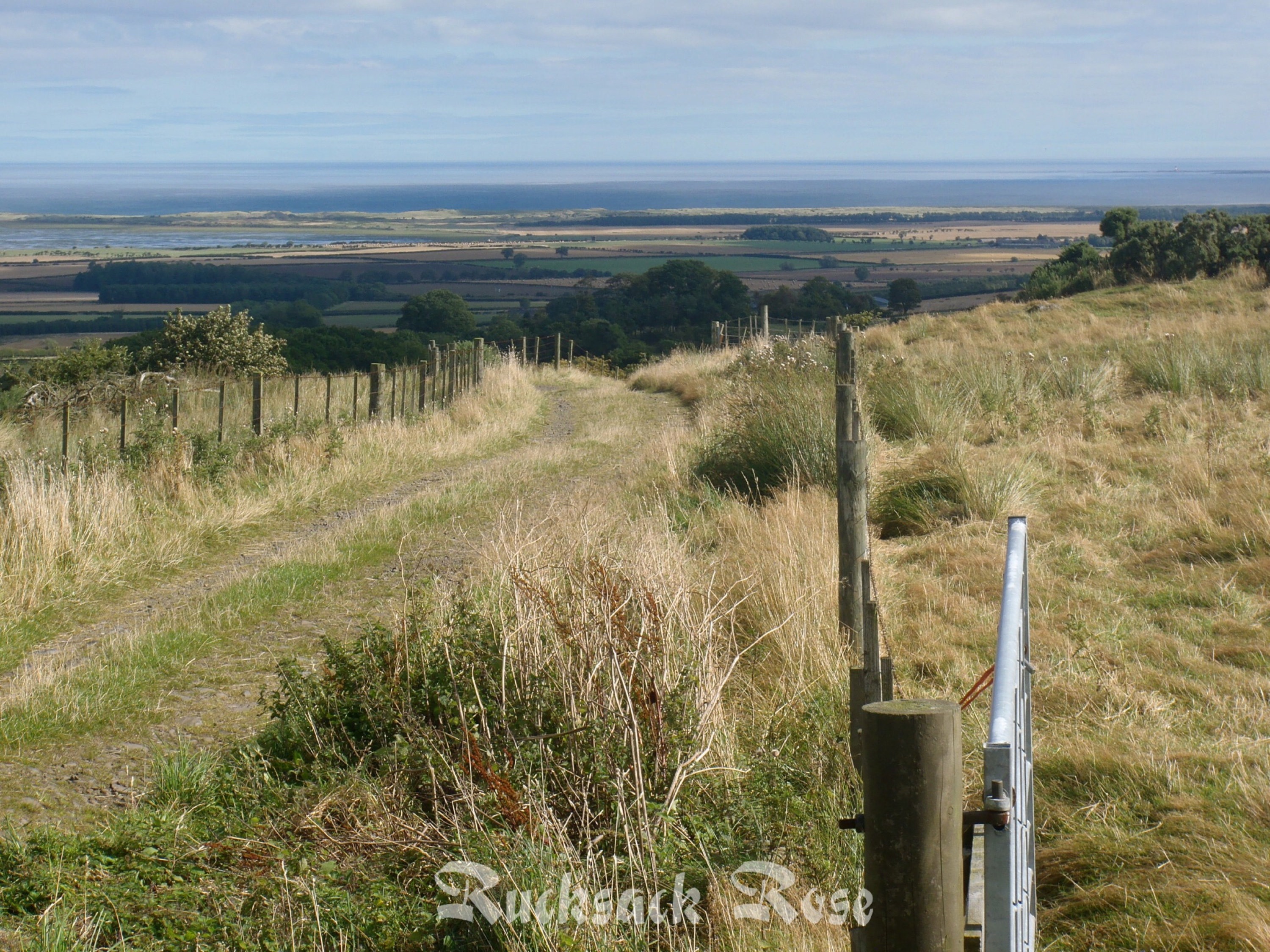 Holy Island view