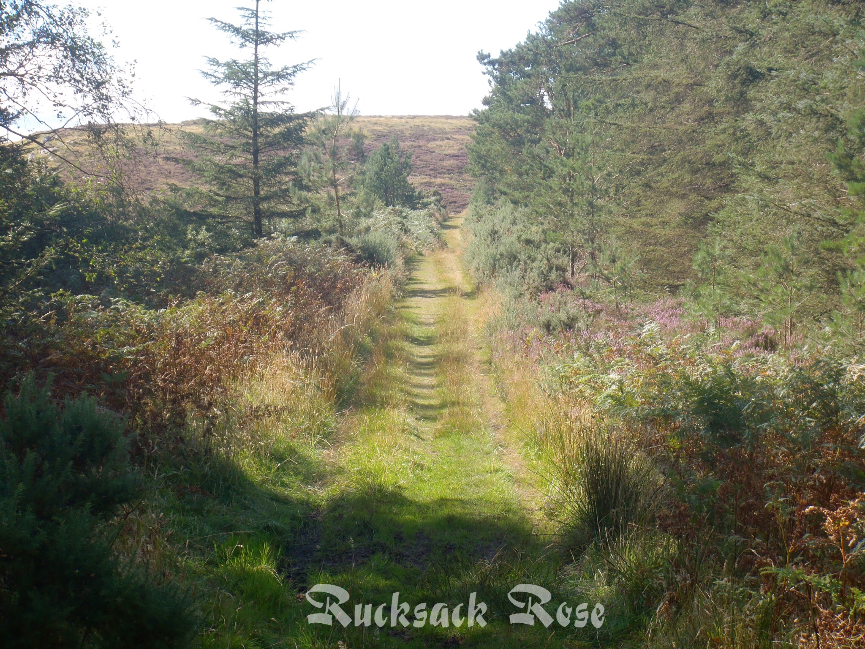 Raven's Crag track