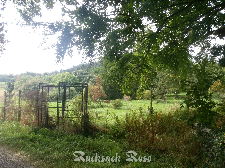 Howick Hall gates