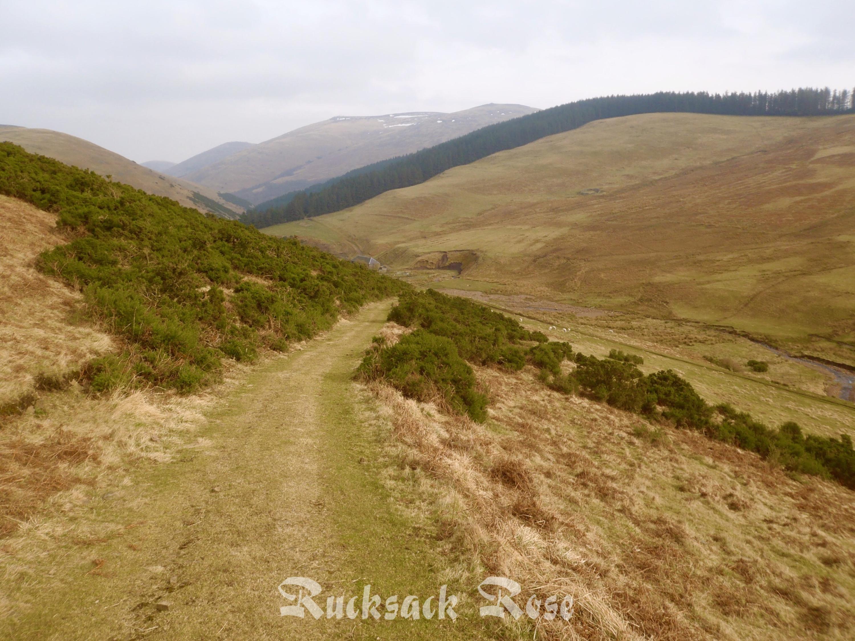 Trowupburn path