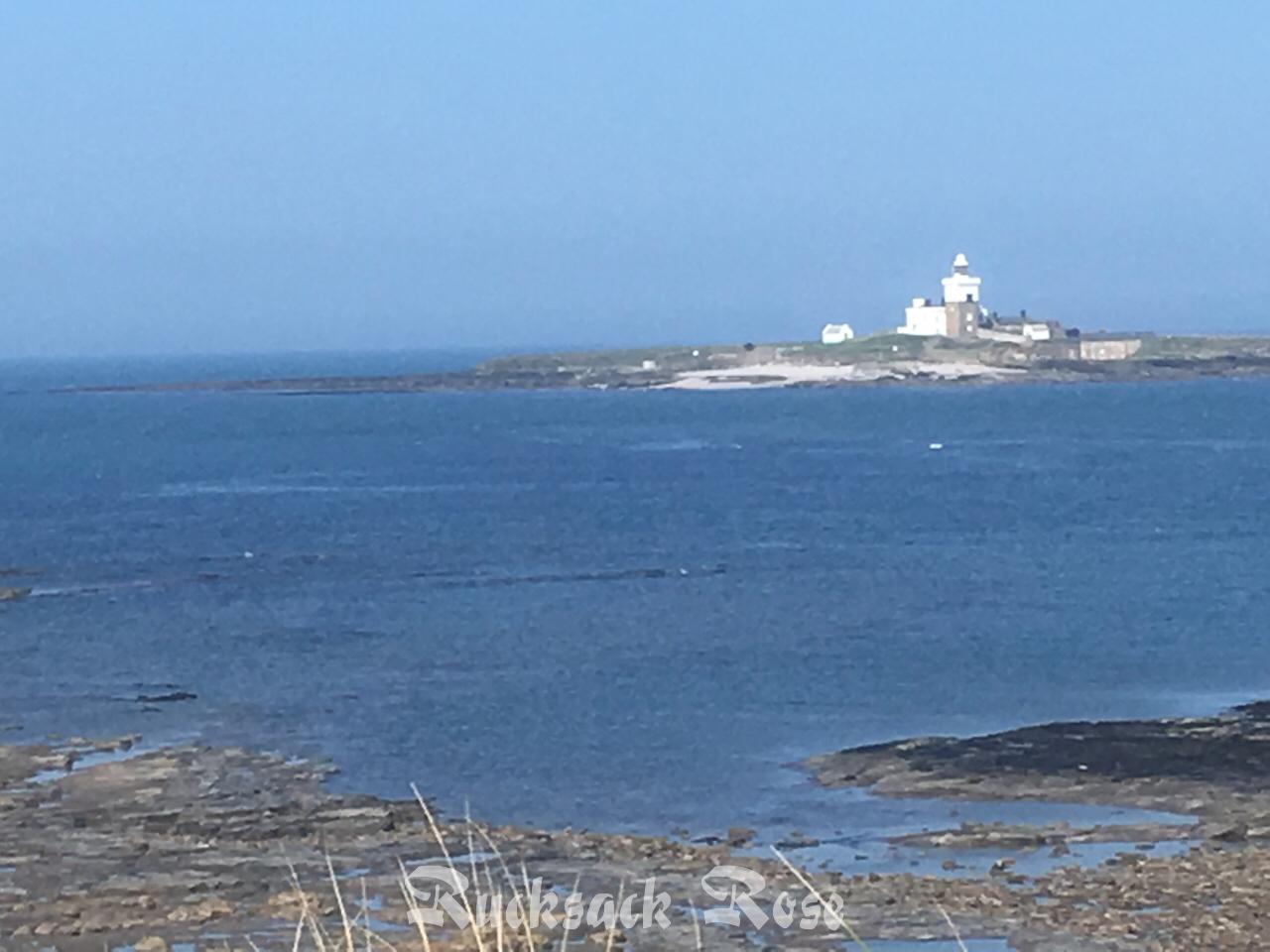 Coquet Island